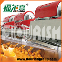 Hot sale industrial fruit juicer made in China