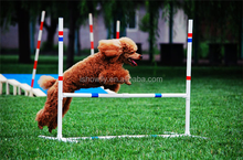 Unique Pet Agility training range Outdoor Dog Agility Kit Obstacle Course Creativity Speed Slalom