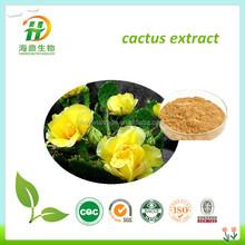 Inspected Organic San Pedro Cactus Extract, Prickly Pear Cactus Extract, Cactus Plant extract