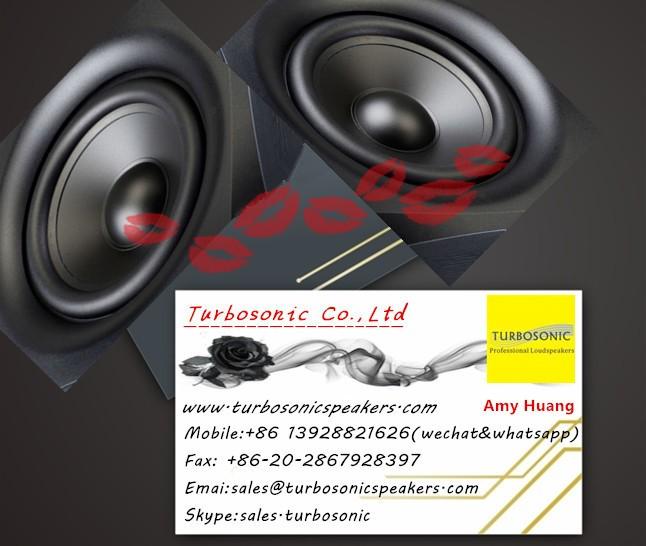 8 ''home theater e alto-falantes de karaoke com borda de espuma, <BR/> OEM fabricante alto-falante