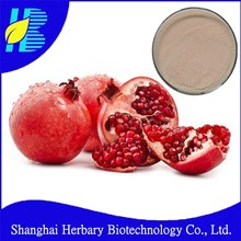Top quality guava leaf extract