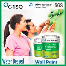 exterior interior wall paint