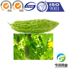 China factory High quality Natural Bitter Melon Extract Bitter Melon polysaccharide Powder
