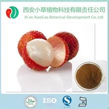 4:1, 10:1, 20:1 lychee extract/P.E powder Lichee powder extract