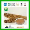 Manufacturer supply Pure Natural Dong Quai Root Extract 4:1,Dong Quai Extract