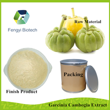 bulk pure garcinia cambogia extract powder with factory price / high hydroxycitric acid