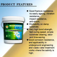 Light permeability, moisture-proof, waterproof, anti-corrosion multi-functional waterproof coating
