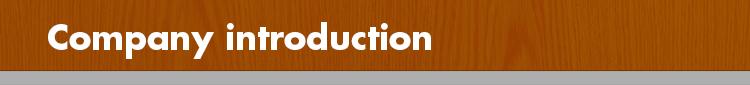 vinyl flooring/click lock vinyl plank flooring/waterproof vinyl tile floor