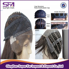 Top quality purple peruvian hair lace front wig