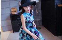 Chiffon Long Dress/ Long beach dress / hot taobao purchasing agency