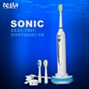 MAF8101 wholesale alibaba travel electric toothbrush vibrator with battery