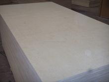 12mm Birch Plywood with MR Glue