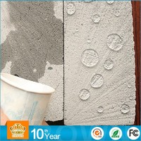Hot Sale Environment Friendly Polyurethane Waterproof Roofing Coating /Paint