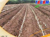 Tractor cultivator 2CZ-2 is a small tractor seeder to produce agricultural product