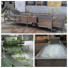 Factory price commercial fruit and vegetable cleaner with best quality and sale service