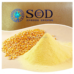 New products skin lightening powder sod yongli
