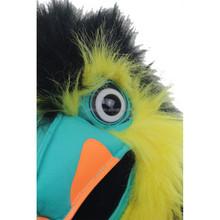 Realistic image color bird