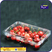 Food grade customized transparent plastic box with holes for cherry