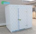 pequeño túnel de congelación cuarto frío, congelador cuarto frío, aire pollo explosión congelador