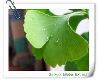 herbal extract Ginkgo biloba Extract,Pure Natural 24% Glycosides 6% Terpenelactones Ginkgo Biloba Extract
