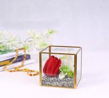 wholesale square glass terrarium decoration/Micro landscape flower glass.