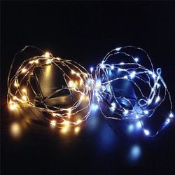 China led lights supplier black light grape led copper string lights