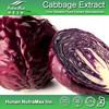 Red Cabbage Powder , Red Cabbage Juice Powder , Brassica Oleracea Powder