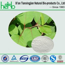 Herbal products cosmetic raw material polygonum cuspidatum extract polydatin