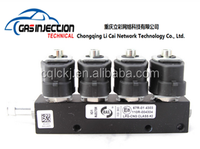 China supplier shock price Lpg/Cng fuel conversion injector Rail for gas vehicle