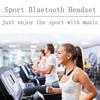 The newest sport bluetooth headphone amplifier,free sample headphones