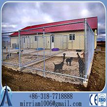 Australian standard Large outdoor galvanised chain link pet enclosure/dog kennels & dog cage & dog runs