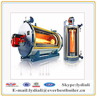 Hot-sale wood/coal fired industrial Thermal oil heater/boiler price