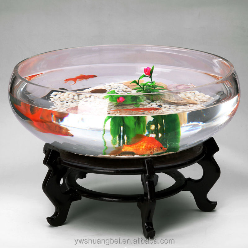 Wide mouth spherical glass fish bowl large glass aquarium for Large fish bowl