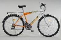 China 18 speed cheap mountain bike