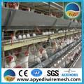 jaulas para pollos de engorde