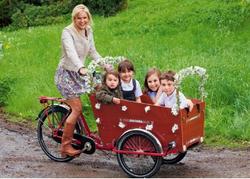 2015 hot sale passenger three wheel bicycle / bike / trike / tricycle
