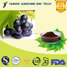 100% natural grape seed free samples for grape seed extract 95% OPC Proanthocyanidins
