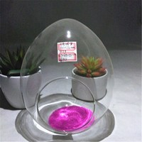 Best Selling Products Glass Bottle Terrarium