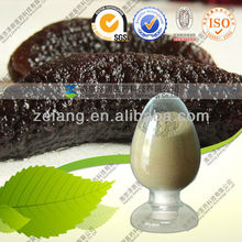 Natural Sea Cucumber Extract Powder