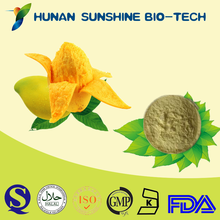 Made in China Mango Juice Drink Flour Making Snack Food