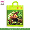 new style fashion design loop handle plastic bag