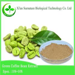 Hot sale green coffee bean extract chlorogenic acid