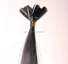 Cheap u-tip/nail hair ~ hot selling 100% human remy hair extention
