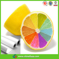 made in china self adhesive high glossy pp paper for dye inlk