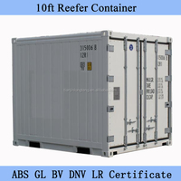 10ft 20ft 40ft Carrier Reefer Container for Sale