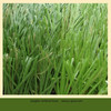 zhejiang artificial grass football field artificial grass
