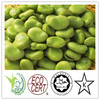 /product-gs/china-2041-fresh-and-natural-no-excipient-80-broad-bean-protein-1886333080.html