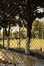 china wholesale lowes chain link fences prices lightweight netting garden fencing