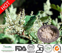 100% Natural water soluble Resveratrol 98%, Trans-Resveratrol,Polydatin,Piceid with GMP certificate