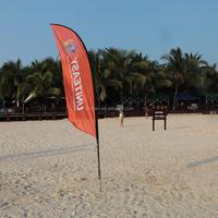 Cheap Decorative PE Beach Flag for Asian cup Australia 2015
